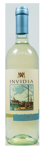 invidia vini piemontesi bianco